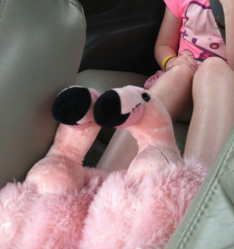 Flamingo-slippers