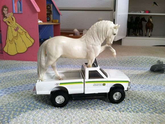 The World's First Breyer Horse Wheelchair